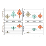 Grouped Violin Plot