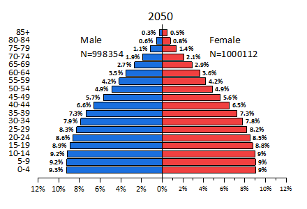 Population Pyramid Graph.png
