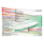 Sankey Diagram of Awarded Qld Government Contracts